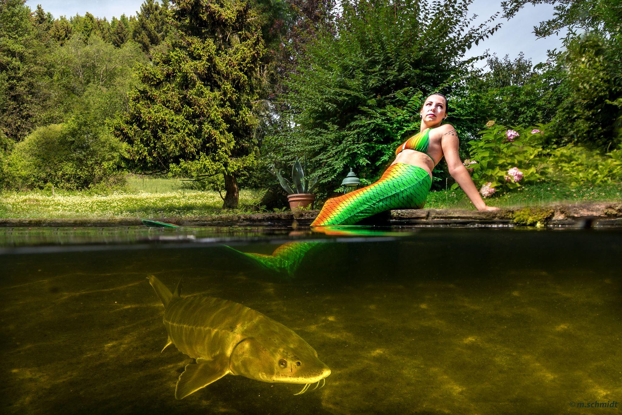 Meermaid werden und Tauchschein gewinnen